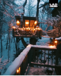 Dank, 🤖, and New: LAD  BIBL E This cabin is the ultimate New Years hideout 😍❄️