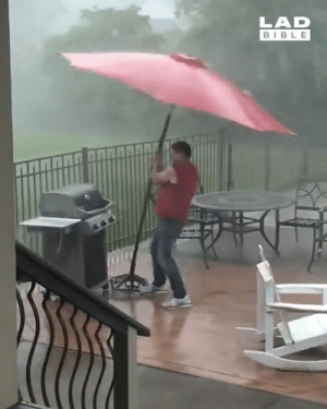When it's absolutely pouring it down with rain but you're determined to get the BBQ going 🙈☂️: LAD  BIBL E When it's absolutely pouring it down with rain but you're determined to get the BBQ going 🙈☂️
