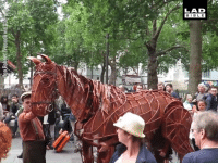 Dank, Life, and Bible: LAD  BIBLE  0 This life-size War Horse model is spectacular 😲🐎