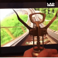 Ali, Dank, and Life: LAD  BIBLE  ALI Bottle opener has the time of his life on a rollercoaster 😂🎢  Twitter / SamfletcherEsq