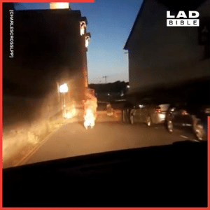 Dank, Police, and Bible: LAD  BIBLE  [CHARLESCROSSLPP] You know it's been a wild night when you're dressed as a T-Rex being chased by the police at 3am 😂🦖