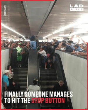 Dank, Bible, and Never: LAD  BIBLE  FINALLY SOMEONE MANAGES  TO HIT THESPOP BUTTON  [VIRALHOG] I'm never taking the escalator again! Absolutely horific! 😰