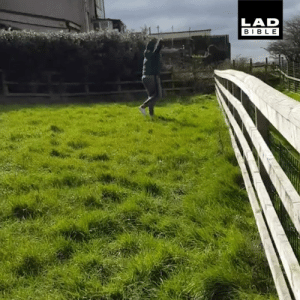 Dank, Bible, and Dance: LAD  BIBLE 'Just had a dance off with an alpaca' 😂😂