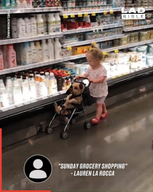 "Dank, Food, and Shopping: LAD  BIBLE  ""SUNDAY GROCERY SHOPPING""  -LAUREN LA ROCCA  THELIONSMAMA] How to keep your child entertained when you go food shopping 🙈😂"