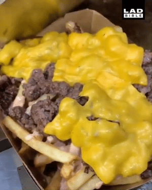 Dank, Bible, and World: LAD  BIBLE These cheeseburger fries look out of this world 🤤  IG: Grubspot