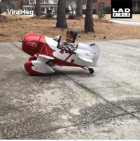 Dad, Dank, and Airplane: LAD  BIBLE This dad and his four-year-old son spent 6 months making a tiny airplane together. Father of the Year right here! 👏✈️