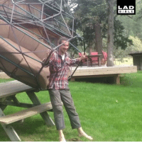 Memes, Bible, and Giant: LAD  BIBLE This giant garden swing looks incredible! @kodamazomes