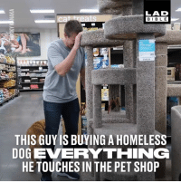 Dank, Homeless, and Life: LAD  BIBLE  THIS GUY IS BUYING A HOMELESS  DOG EERYTHING  HE TOUCHES IN THE PET SHOP This homeless dog was taken to a pet shop for the first time in his life and was bought everything he touched! 😍🐶 - Rocky Kanaka