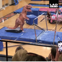 Memes, Anastasia, and Best: LAD  BIBLE This T-Rex gymnast is the best thing I've seen today 😂🦖 - @5280gymnast_anastasia x @toby_scott_