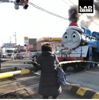 Thomas The Tank Engine is real! My childhood dream is fulfilled! 😍🚂: LAD  BIBLE Thomas The Tank Engine is real! My childhood dream is fulfilled! 😍🚂