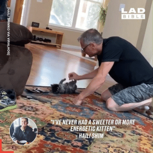 "This kitten absolutely loves being slid across the hardwood flooring 🐱😄: LAD  BIBLE  TVE NEVER HADA SWEETER OR MORE  ENERGETIC KITTEN""  HAILI SHIM  [HAILI SHIMKO VIA VIRALHOG] This kitten absolutely loves being slid across the hardwood flooring 🐱😄"