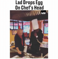 """Head, Memes, and 🤖: Lad Drops Egg  On Chef's Head  LAD  BIBL E """"What has my brother just done!?"""" 😂😂 @Nelsonakotei"""