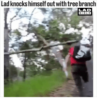 Tag someone who would do this 😂😂: Lad knocks himself out with tree branch  LAD  BIBL E Tag someone who would do this 😂😂