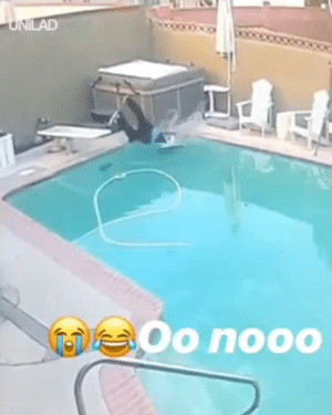 "Dank, Pool, and 🤖: LAD  Oo nooo ""My brother's dog fell into the pool""... Wait for it 😂😂"