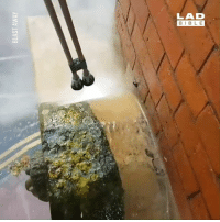 Dank, Power, and Watch: LAD There's just something about this power washing, I could watch it all day! So satisfying!   Blast Away