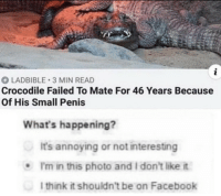Facebook, Penis, and Annoying: LADBIBLE 3 MIN READ  Crocodile Failed To Mate For 46 Years Because  Of His Small Penis  What's happening?  It's annoying or not interesting  I'm in this photo and I don't like it  I think it shouldn't be on Facebook I feel offended and i want to see the maneger