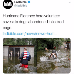 "So thankful for volunteers. Every natural disaster dogs/pets seem to get left behind. The excuses for leaving them locked up range from ""they could be dangerous"" to ""you don't know the story"". This is all true, but there are other options to leaving animals to die. Especially when you have days notice. Not minutes. Thanks to those who are saving these poor abandoned animals. And sincere hopes for recovery and safety for all effected.Tw: @ladbiible: LADbible  LAD  IBLE @ladbible  Hurricane Florence hero volunteer  saves six dogs abandoned in locked  cage  ladbible.com/news/news-hurr So thankful for volunteers. Every natural disaster dogs/pets seem to get left behind. The excuses for leaving them locked up range from ""they could be dangerous"" to ""you don't know the story"". This is all true, but there are other options to leaving animals to die. Especially when you have days notice. Not minutes. Thanks to those who are saving these poor abandoned animals. And sincere hopes for recovery and safety for all effected.Tw: @ladbiible"