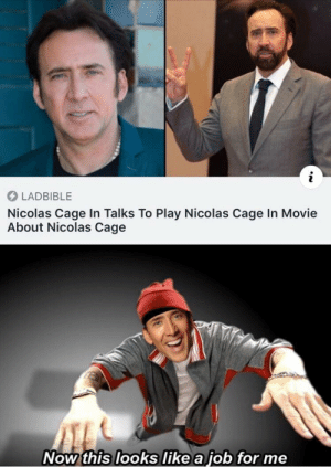 Hmm yes the floor here is made out of floor: LADBIBLE  Nicolas Cage In Talks To Play Nicolas Cage In Movie  About Nicolas Cage  Now this looks like a job for me Hmm yes the floor here is made out of floor
