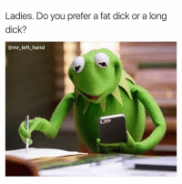 Hoes, Dick, and Dank Memes: Ladies. Do you prefer a fat dick or a long  dick?  @mr_ left_hand Most Of Y'all Hoes Want Both. Lmfao