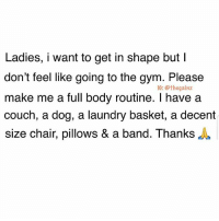 Gym, Laundry, and Memes: Ladies, i want to get in shape but I  don't feel like going to the gym. Please  make me a full body routine. I have a  couch, a dog, a laundry basket, a decent  size chair, pillows & a band. ThanksA  1G: @thegainz Any suggestions on herbal shakes or teas would also be appreciated. Experts only