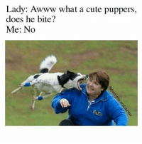 Lady: Awww what a cute puppers,  does he bite?  Me: No Thats a goodboy @just.you.and.meme 🐶 🐕 😂
