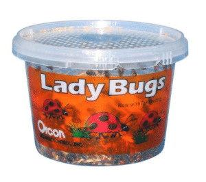 "sixpenceee:  Found on Amazon: 1,500 Live LadybugsCustomer review: ""I really only wanted about 100 ladybugs  but 1500 was the only amount I could find. Hirt's shipped them very  quickly and I had them in less than a week even being shipped to an APO  address. My wife about killed me for getting the bugs.""Link: Lady Bugs  Now with  con sixpenceee:  Found on Amazon: 1,500 Live LadybugsCustomer review: ""I really only wanted about 100 ladybugs  but 1500 was the only amount I could find. Hirt's shipped them very  quickly and I had them in less than a week even being shipped to an APO  address. My wife about killed me for getting the bugs.""Link"
