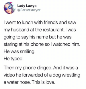 Dank, Friends, and Love: Lady Lawya  @Parkerlawyer  I went to lunch with friends and savw  my husband at the restaurant. I was  going to say his name but he was  staring at his phone so l watched him  He was smiling  He typed.  Then my phone dinged. And it was a  video he forwarded of a dog wrestling  a water hose. This is love. #relationshipgoals  (via Twitter.com/Parkerlawyer)