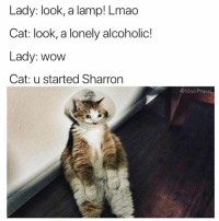 cat: Lady: look, a lamp! Lmao  Cat: look, a lonely alcoholic!  Lady: wow  Cat: u started Sharron  @MasiPopal