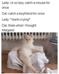 "Cats, Crying, and Lazy: Lady: Ur so lazy, catch a mouse for  once  Cat: catch a boyfriend for once  Lady: *starts crying*  Cat: thats what I thought  Margaret  @MasiPopal <p><a href=""http://memehumor.net/post/171341743121/why-i-love-cats"" class=""tumblr_blog"">memehumor</a>:</p>  <blockquote><p>Why i love cats</p></blockquote>"