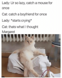 The Humor Lab: Lady: Ur so lazy, catch a mouse for  once  Cat: catch a boyfriend for once  Lady: *starts crying  Cat: thats what thought  Margaret  aMasi Popal The Humor Lab
