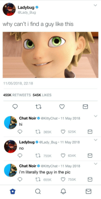 Target, Tumblr, and Blog: Ladybug  @Lady_Bug  why can't i find a guy like this  11/05/2018, 22:18  455K RETWEETS 545K LIKES   Chat Noir Ф @KittyChat-1 1 May 201 8  hi  t03  65K  525K  Ladybug  @Lady. Bug-11 May 201 8  no  t 755K  634K  Chat Noir Ф @KittyChat-1 1 May 2018  i'm literally the guy in the pic  655K 755K mari-cheres:  has this been done yet