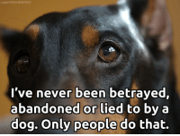 Memes, True, and Flickr: Lagged 2Death@flickr  I've never been betrayed,  abandoned or lied to by a  dog. Only people do that. Sad, but true!