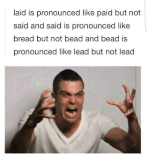 English does not make sense via /r/memes http://bit.ly/31lbFhQ: laid is pronounced like paid but not  said and said is pronounced like  bread but not bead and bead is  pronounced like lead but not lead English does not make sense via /r/memes http://bit.ly/31lbFhQ
