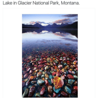 Montana, Black Twitter, and National Parks: Lake in Glacier National Park, Montana. Follow @okdayum for more! ❤️
