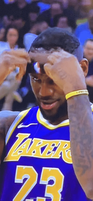 Memes, Nike, and 🤖: LAKER  23 RT @Travonne: Nike gotta steal this pic like they did the tapes when Crawford caught him at the rim https://t.co/KCzv3HIH8e