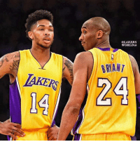 "Basketball, Kobe Bryant, and Los Angeles Lakers: @LAKERS  WORLDr6  BRWANT  AKERS  14  24 Brandon Ingram Still Plans to Workout With Kobe Bryant. _ Ingram wants to diversify his scoring with drills on spot-up shooting drills, as well as working off pick-and-rolls, from the elbows and from the block. After offering positive reviews with the Lakers' strength and conditioning coaches both past (Tim DiFrancesco) and present (Gunnar Peterson), Ingram plans to add more unspecified amount of strength through continuous weight training. And Ingram remained committed to his anticipated workout with Kobe Bryant that will focus on learning how he watches film, scouts teams and studies player tendencies. ""Everything we do on the basketball court is mental,"" Ingram said. ""It's nothing physical."" _ (via Mark Medina of the Orange County Register)  #LakersSire25 #WWLG4L"