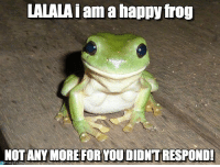 LALALAiam happy frog  NOT ANY MORE FOR YOU DIONTRESPONDI