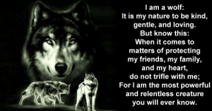 "SpecGhost on Twitter: ""~ #RightWolf~#Wolf—When it comes to matters ...: lam a wolf:  It is my nature to be kind,  gentle, and loving.  But know this:  When it comes to  matters of protecting  my friends, my family,  and my heart,  do not trifle with me;  For I am the most powerful  and relentless creature  you will ever know. SpecGhost on Twitter: ""~ #RightWolf~#Wolf—When it comes to matters ..."