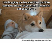 Love, Shoes, and Tumblr: lam hugging you becausel love you! Also  someone ate one of your  shoes but this is  you should probably go to TheMetaPicture.com srsfunny:This Hug Is Not About That