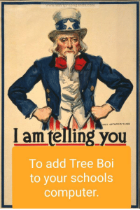 Computer, Tree, and Dank Memes: Lam telling you  To add Tree Boi  to your schools  computer.