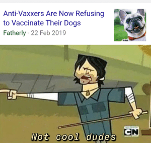 "lampfaced: roguesareth:  emeraldspiral:  roguesareth: Do you want rabies? This is how you get rabies Is it really that big of a deal if your dog has autism?   I need to reblog this again because no seriously R A B I E S: -is basically not treatable once you start showing symptoms.  Straight up you will die and not in any kind of fun way. We're talking flu symptoms that develop into hallucinations, severe hydrophobia, partial paralysis and a slew of other shit. -99% of rabies cases in the world come from stray dog bites. EXCEPT IN THE US. Rabies vaccines have nearly illuminated the threat from dogs. Our biggest concerns are wild animals like raccoons, skunks, foxes and coyotes and feral cats. -Rabies is extremely preventable by vaccines and nearly nonexistent in countries where the vaccine is widely available and taken advantage of.  -B U T if people stop VACCINATING THEIR DOGS (and other animals that are susceptible like cats and farm animals like cows, horses and goats) we will likely see a rise in rabies cases among free roaming animals and BECAUSE we dont experience many cases (because of vaccines) and often people arent informed. We know ""rabies is bad"" but that seems to be it in a lot of cases, I'd wager a lot of people dont knownits transferable from animals to humans at all.  -Most rabies cases in humans are children under 15.  V A C C I N A T E   Y O U R   A N I M A L S  -brought to you by me, who just did a research project on rabies for one of my MA classes   I'm a vet tech, and the way that we try to convince people into vaccinating their pets at our clinic against rabies is telling them that it's a federally mandated vaccine, and what happens should their animal bite someone if they have no current rabies vaccine on record. Basically, if your not-protected-against-rabies pet bites someone, regardless of if they've ever possibly been exposed or not, the animal needs to be tested. How do you test an animal for rabies? You look at extremely thin slices of brain tissue. And the only way to get that brain tissue is to euthanize and decapitate the animal, and send the entire head to the state lab where they can process it. Doesn't matter why the bite happened, or how bad it was, or if the animal is completely healthy and doesn't have rabies. If skin was broken, it has to be reported, and the animal's fate is out of your hands.  Rabies is goddamn scary. : lampfaced: roguesareth:  emeraldspiral:  roguesareth: Do you want rabies? This is how you get rabies Is it really that big of a deal if your dog has autism?   I need to reblog this again because no seriously R A B I E S: -is basically not treatable once you start showing symptoms.  Straight up you will die and not in any kind of fun way. We're talking flu symptoms that develop into hallucinations, severe hydrophobia, partial paralysis and a slew of other shit. -99% of rabies cases in the world come from stray dog bites. EXCEPT IN THE US. Rabies vaccines have nearly illuminated the threat from dogs. Our biggest concerns are wild animals like raccoons, skunks, foxes and coyotes and feral cats. -Rabies is extremely preventable by vaccines and nearly nonexistent in countries where the vaccine is widely available and taken advantage of.  -B U T if people stop VACCINATING THEIR DOGS (and other animals that are susceptible like cats and farm animals like cows, horses and goats) we will likely see a rise in rabies cases among free roaming animals and BECAUSE we dont experience many cases (because of vaccines) and often people arent informed. We know ""rabies is bad"" but that seems to be it in a lot of cases, I'd wager a lot of people dont knownits transferable from animals to humans at all.  -Most rabies cases in humans are children under 15.  V A C C I N A T E   Y O U R   A N I M A L S  -brought to you by me, who just did a research project on rabies for one of my MA classes   I'm a vet tech, and the way that we try to convince people into vaccinating their pets at our clinic against rabies is telling them that it's a federally mandated vaccine, and what happens should their animal bite someone if they have no current rabies vaccine on record. Basically, if your not-protected-against-rabies pet bites someone, regardless of if they've ever possibly been exposed or not, the animal needs to be tested. How do you test an animal for rabies? You look at extremely thin slices of brain tissue. And the only way to get that brain tissue is to euthanize and decapitate the animal, and send the entire head to the state lab where they can process it. Doesn't matter why the bite happened, or how bad it was, or if the animal is completely healthy and doesn't have rabies. If skin was broken, it has to be reported, and the animal's fate is out of your hands.  Rabies is goddamn scary."