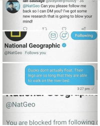 Memes, True, and Ducks: lan Sausage (astepnenjmoiioy 3S  @NatGeo Can you please follow me  back so I can DM you? I've got some  new research that is going to blow your  mind!  Cn  Following  National Geographic  @NatGeo Follows you  Ducks don't actually float. Their  legs are so long that they are able  to walk on the river bed  3:27 pm  @Nat Geo  You are blocked from following( Is this true