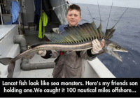 Memes, Monster, and Fish: Lancet fish look like sea monsters. Here's my friends son  holding one. We caught it 100 nautical miles offshore...