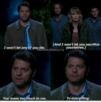 Memes, First Blood, and 🤖: LAnd I won't let you sacrifice  yourselves.  I won't let any of you die.  the charlie bradbury//ig  To everything.  You mean too much to me. Castiel: This world.....This sad, doomed little world, it needs you. It needs every last Winchester it can get. I will not let you die. I won't let any of you die. I won't let you sacrifice yourselves. You mean too much to me, to everything. 12.09 - First Blood
