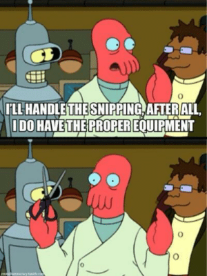 Tumblr, Blog, and Futurama: LANDLETHESNIPPING ATERALL  DO HAVE THE PROPER EQUIPME  0 scifiseries:  The futurama writers gave some amazing jokes to zoidberg