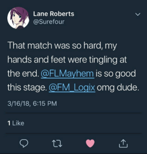 Dude, Omg, and Tumblr: Lane Roberts  @Surefour  That match was so hard, my  hands and feet were tingling at  the end.@FLMayhem is so good  this stage. FM Logix omg dude.  3/16/18, 6:15 PM  1 Like boxfours:  omg