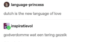 Love, Wat, and Princess: language-princess  dutch is the new language of love  inspiratievol  godverdomme wat een tering gezeik