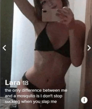Right on: Lara 18  the only difference between me  and a mosquito is I don't stop  sucking when you slap me Right on