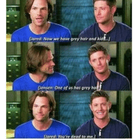 Memes, 🤖, and Greys: lared: Now we have grey hair and kid ...j  [Jensen: One of us has grey ha  Dared: You're dead to me,l I loved this interview