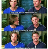 Memes, 🤖, and Oar: Lared: Now we have grey hair and kid ..j  [Jensen One of us has grey ha  Oared You're dead to me.1 This would be me and @assbutt4lyfe lmao 😂😂 supernatural deanwinchester samwinchester spn spncosplay castiel cass dcweek deanwinchesteredit jensenackles jensenacklesedit spnfamily supernaturalfamily supernaturalfan supernaturalislife assbutt idjits impala67 castiel castielangelofthelord mishacollins mishacollinsistheoverlord mishamigos mishapocolypse jared padaleki jaredpadalecki gabriel lucifer crowley crowrey